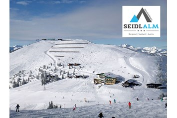 Skihotel: mountainlovers Berghotel*** SeidlAlm